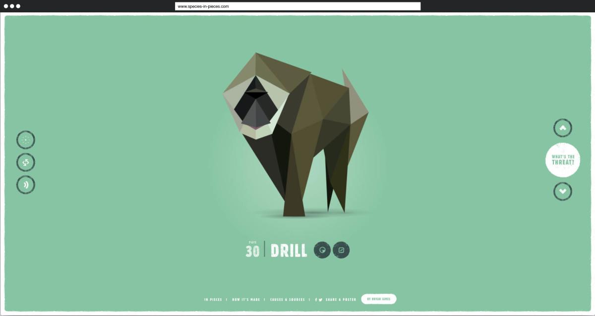 Species in Pieces: Eine interaktive Ausstellung