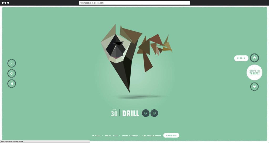 Species in Pieces   30. Drill